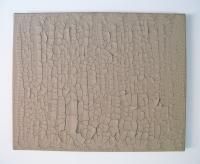 Vestige, Acryl et plâtre sur toile - 40 x 50 cm, 2007